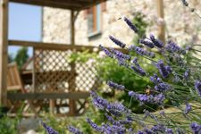 Bed and breakfast La Fermette Champenoise , Marne, Jonquery, France