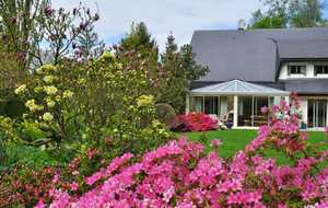 Bed and breakfast Les Hetres , Seine_maritime, Offranville, France