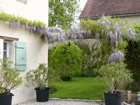 Bed and breakfast La Recre , Yonne, Turny, France